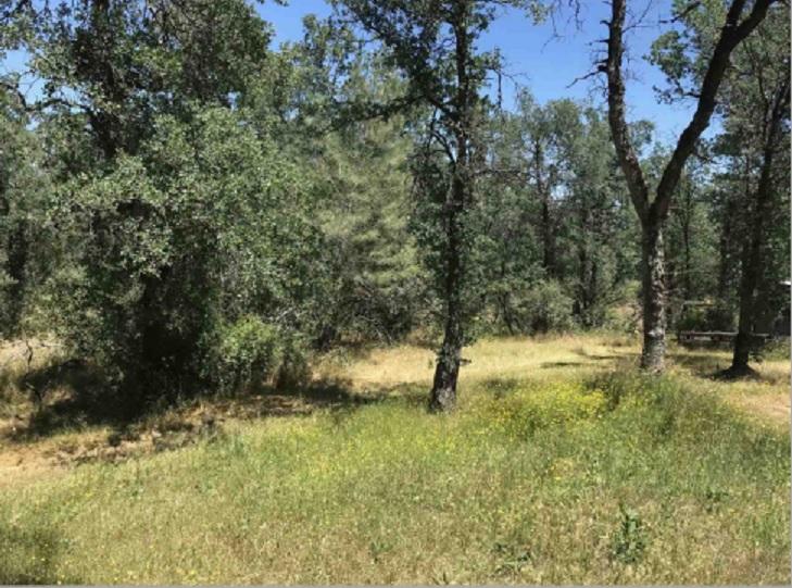 Owner Financed Properties - Tehama & Shasta Counties